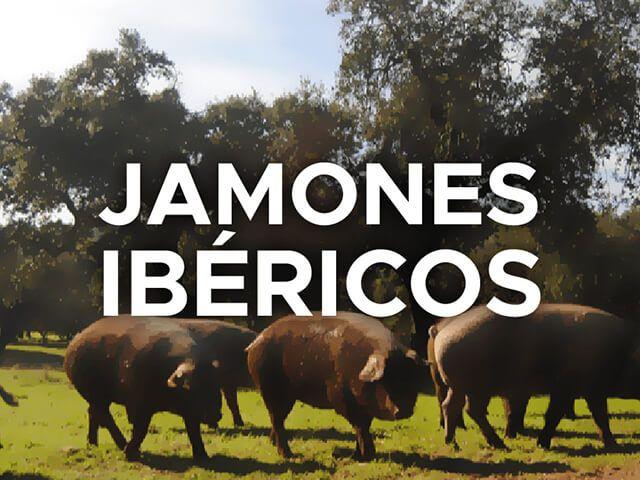 Jamones Ibericos Vallejo